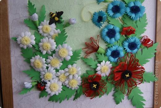 ромашки, васильки , маки и насекомые. фото 2