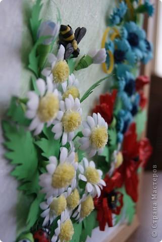 ромашки, васильки , маки и насекомые. фото 6