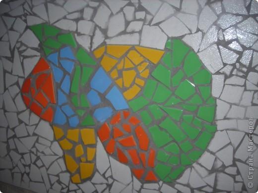 Рыба на стене фото 2