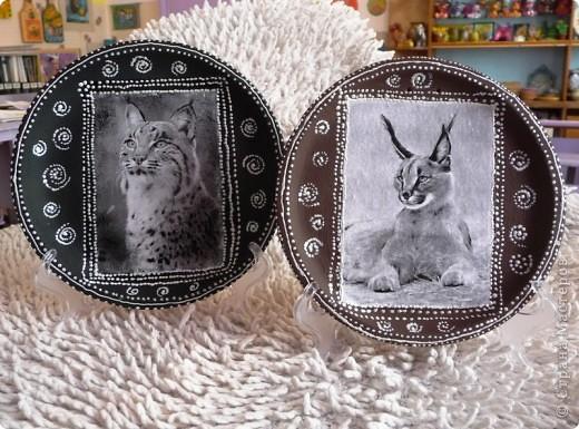 Рыси Декупаж распечатка,керамика акрил,контур. фото 1