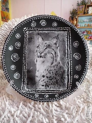 Рыси Декупаж распечатка,керамика акрил,контур. фото 2
