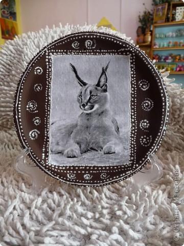 Рыси Декупаж распечатка,керамика акрил,контур. фото 3