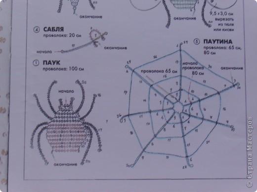 """""""Паук и скорпион"""" фото 2"""