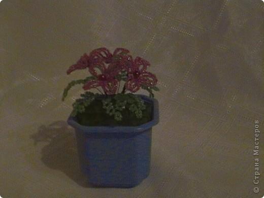 я тоже решила сделать цветы.это мои первые цветы.извеняюсь что фото получились не чёткими. фото 2