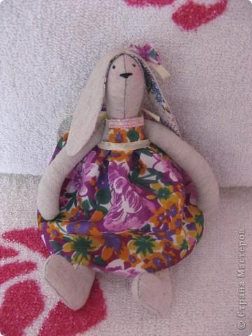 Жабунька со своей стрекозой,еще тот попрыгун!!)) фото 14