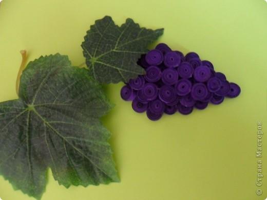 В нашей стране уже очень много винограда поспело, ссылку сделать трудно, всем большое спасибо! фото 2