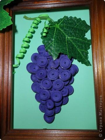 В нашей стране уже очень много винограда поспело, ссылку сделать трудно, всем большое спасибо! фото 1