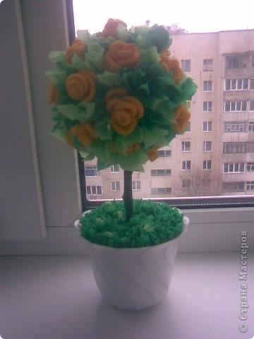 Жёлтое деревце))) фото 2