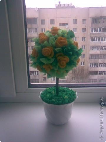Жёлтое деревце))) фото 1