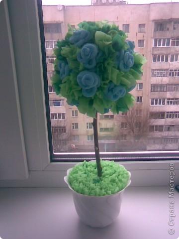 Моё дерево счастья.Огромное спасибо Олисандре! фото 4
