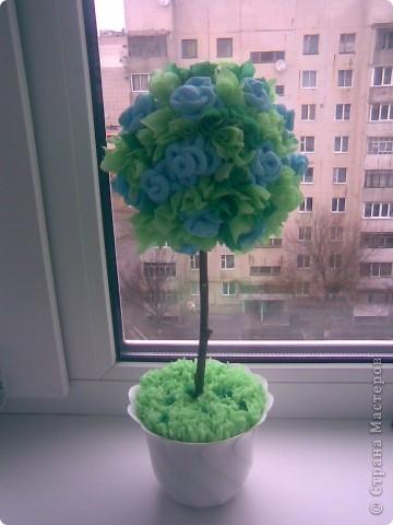 Моё дерево счастья.Огромное спасибо Олисандре! фото 1