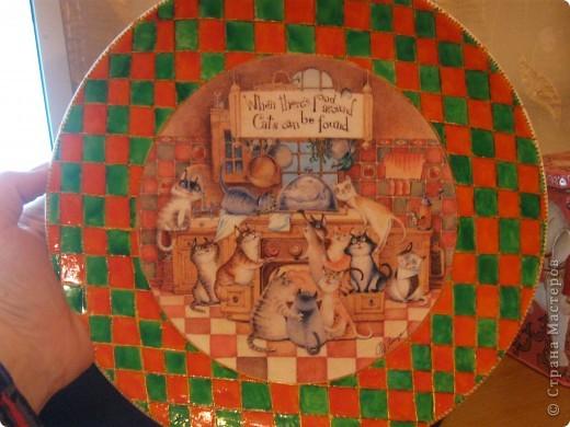 первая тарелка про кошариков фото 2