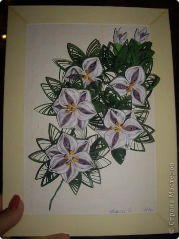 Хотели сделать лилии. фото 1