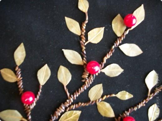 Рамку кофе выложила,листочки из лаврового листа,стебли из семян сосны,ягоды бусины. фото 2