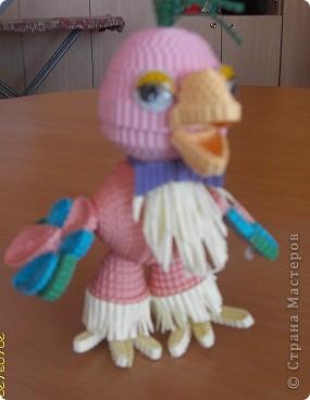 попугай Кешка фото 1