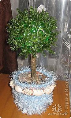 Дерево Морской ежик.