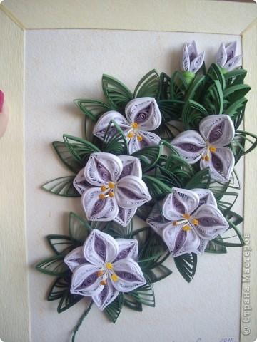 Хотели сделать лилии. фото 4