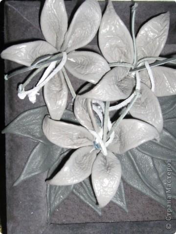 ещё цветы фото 2