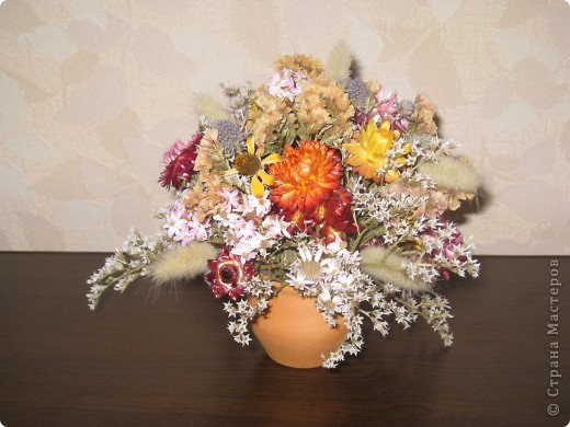 Сухоцветы фото 4