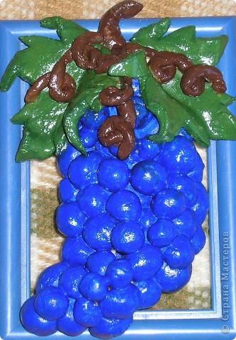 Виноградная картинка фото 2