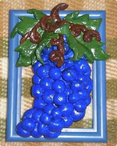 Виноградная картинка фото 1