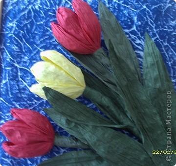 Вот такие тюльпаны расцвели у нас с Танюшкой. Сделаны они из бумажных раскрученных веревок, есть такие в наборах для творчества.  фото 3