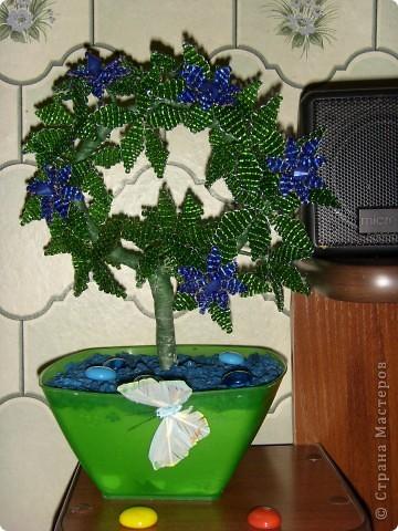 Моя первая объемная работа по бисеру. Самой дерево понравилось. Подарила маме.
