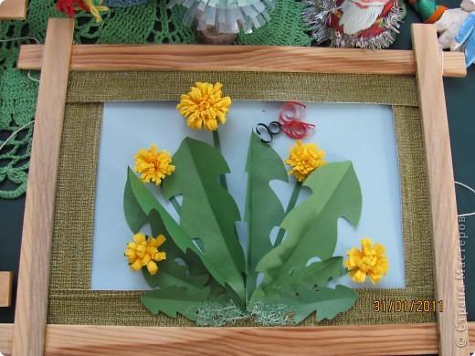 Тюльпаны. фото 2