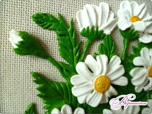 Очень люблю эти простые цветы!  фото 4