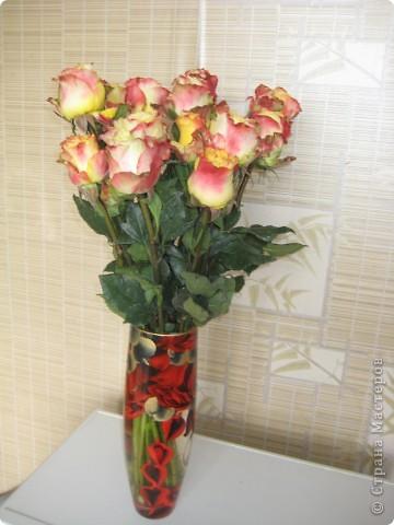 комод и цветы. так приятно на них смотреть! фото 6
