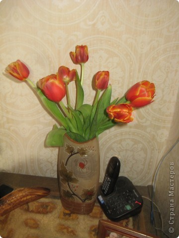комод и цветы. так приятно на них смотреть! фото 8