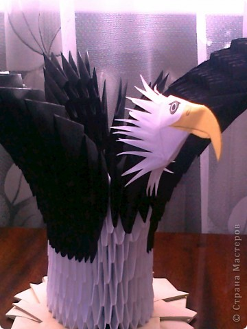 Белоголовый орел...,надеюсь что похож. фото 3