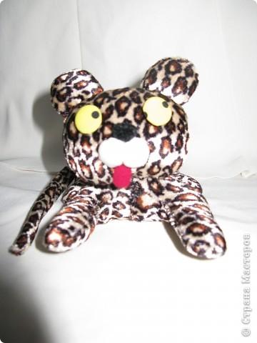 Леопардик фото 1