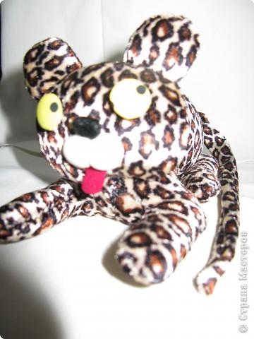 Леопардик фото 2