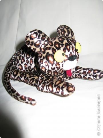 Леопардик фото 3