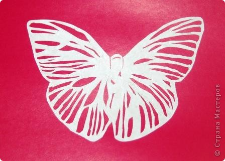 Бабочка.  Мне купили книгу. Там была нарисована очень красивая бабочка. Мне захотелось ее вырезать. фото 1