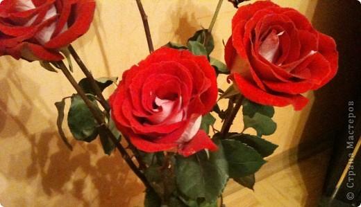 Продолжаю о подареных цветах, чтобы, так сказать, охватить всю картину ))) Это букет таких же роз, как стоят у меня - брат подарил маме фото 4