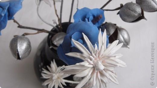Я решила разбавить свою страничку цветами. Букетик давно уже стоит у мамы. Те кто посещает мои страницы видели розы -голубые. Просто пластику синию никуда тогда не могла применить. Я думала что это моя фантазия, но вот Олечка -Tiksi подсказала мне , что они действительно существуют, а потом я их и в интернете увидела. фото 5