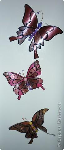 вот такие замечательные, яркие бабочки - магниты:) фото 1