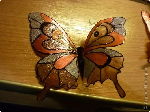 вот такие замечательные, яркие бабочки - магниты:) фото 3