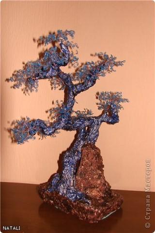 Мое первое дерево фото 1