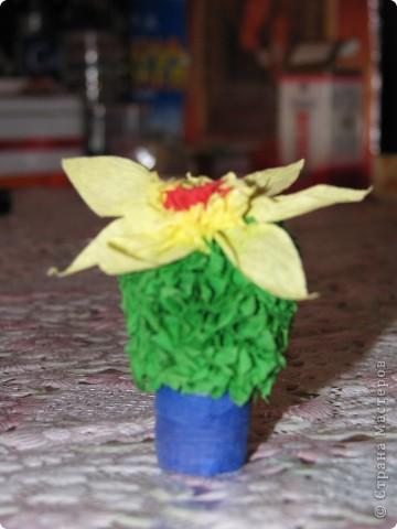 Вот такой кактус получился у моей дочки по МК Татьяны Николаевны http://stranamasterov.ru/node/2743?tid=451 фото 2