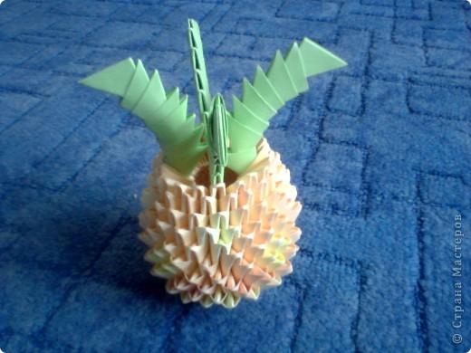 мои фрукты! фото 2