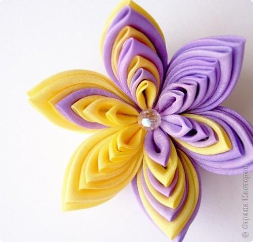 Хочу такой цветок