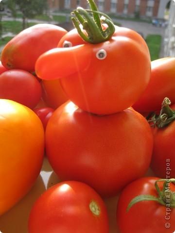 Эти помидоры выросли у нас на огороде, фотографировал еще осенью фото 2