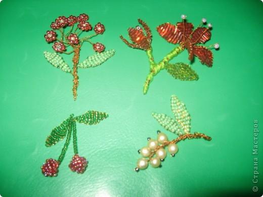 Цветы да ягоды фото 1
