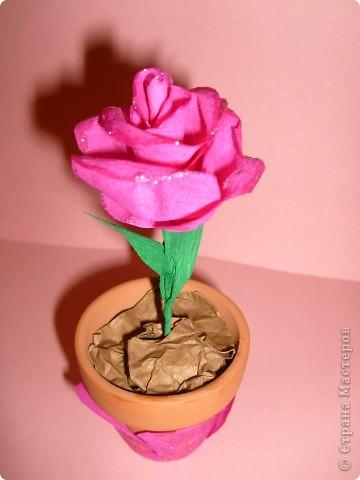Розочку сделала из гофрированной бумаги. фото 1