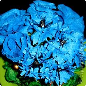 Синенькие цветочки фото 6