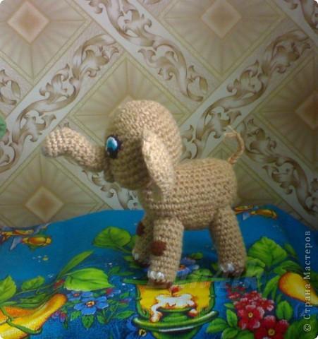 Связался у меня вот такой слонёнок фото 2