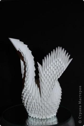 Мини-лебедь фото 2